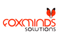 FOXMINDS Solutions LLC