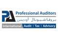 Professional Auditors